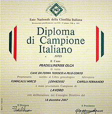 diploma2p