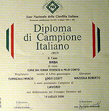 diploma3p