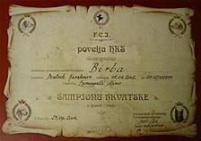 diploma4p