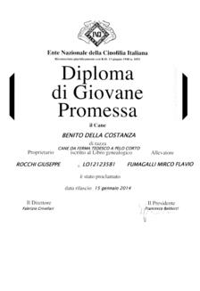 diploma_giovane_promessa